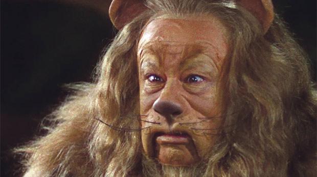 Leo The Lion Of Oz