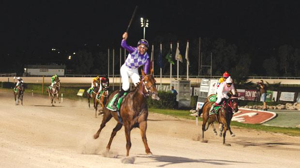 Jockey Michael Sultana rejoices as Timolin crosses the finish line to win this year's Mediterranean Derby at the Marsa Racetrack. Photo: Roderick Cachia
