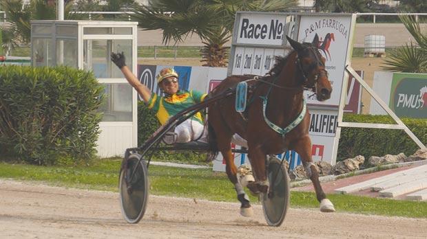 Ranch Get On winning the Premier race. Photo: Steve Zammit Lupi