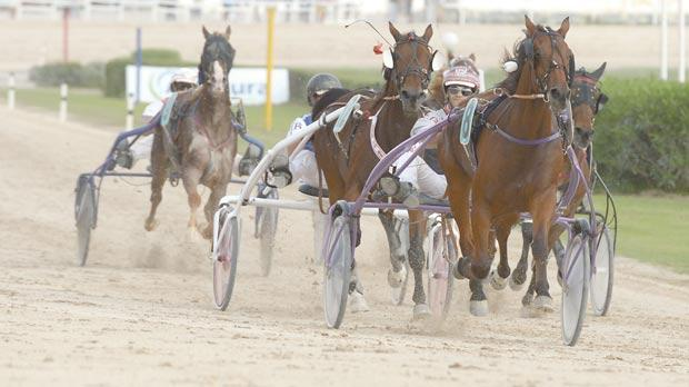Digital Motion winning the Gold Class semi-final at Marsa, yesterday. Photo: Matthew Mirabelli