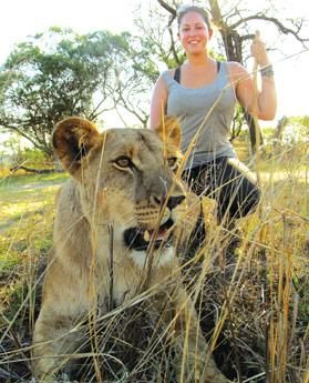 The author gets up close and personal with a lioness.