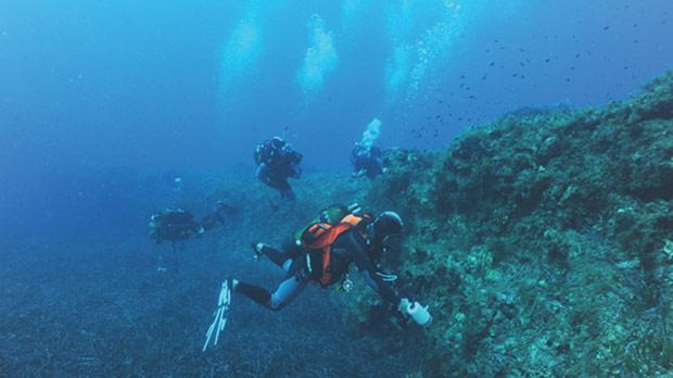 Project participants diving in Malta.