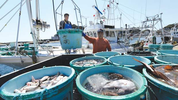Fishermen unloading their catch at the Hirakata fish market in Kitaibaraki, Ibaraki prefecture, south of the stricken Fukushima nuclear power plant.